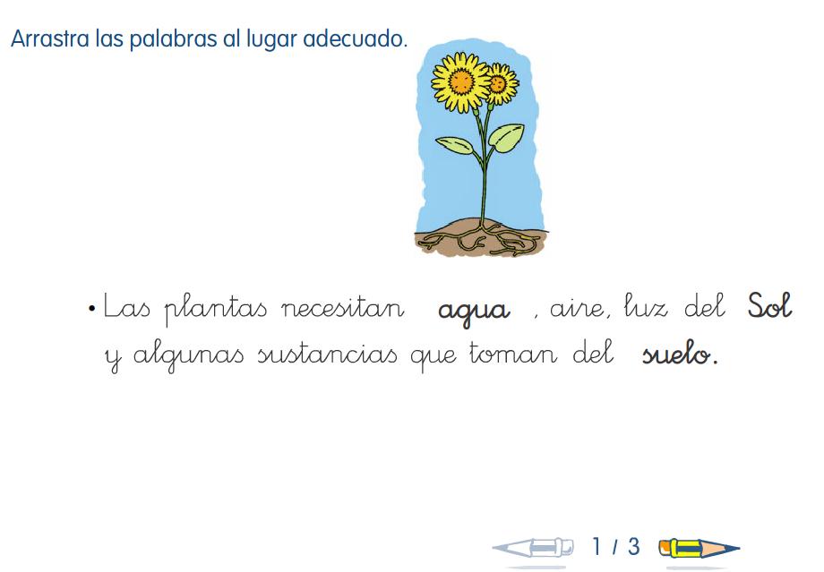 http://www.primerodecarlos.com/SEGUNDO_PRIMARIA/enero/tema1/actividades/CONO/011005.swf