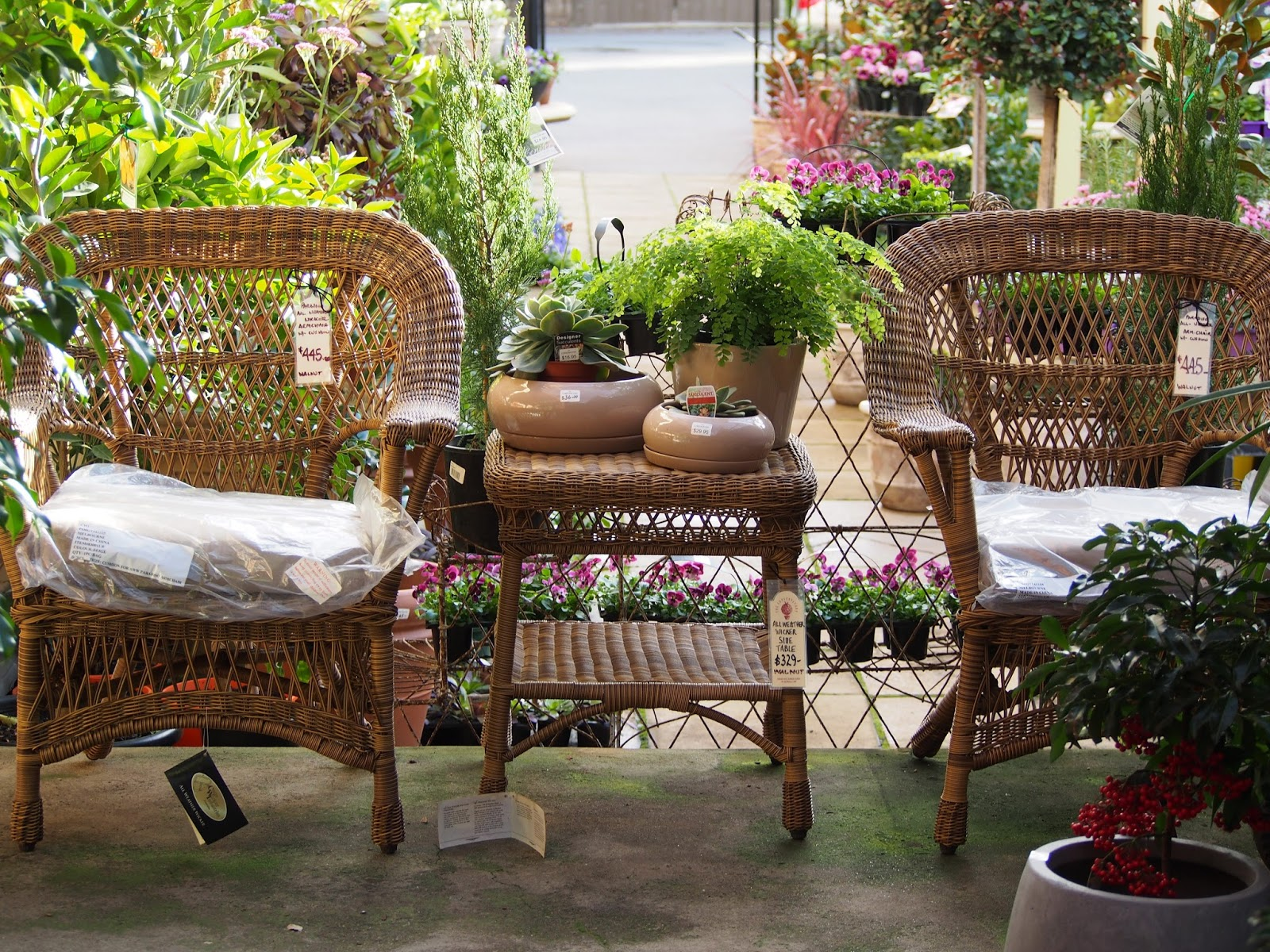 My Adelaide Home : Outdoor Chair Inspiration #gardens