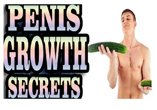 Pa secrets to increasing penis size
