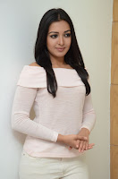 Catherine Tresa Latest Glam at Sarrainodu Event HeyAndhra