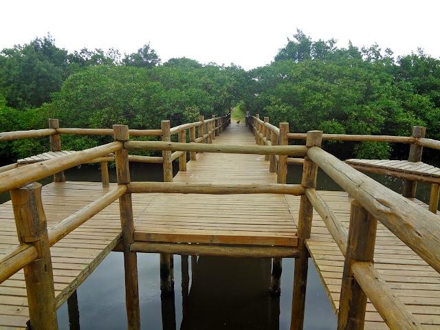 Lagoinha de Pontas das Canas em Florianópolis