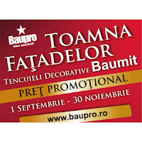 Beneficiile tencuielilor decorative Baumit