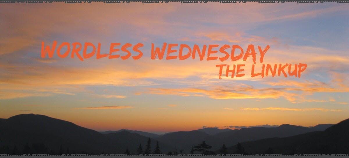 Wordless Wednesday Linkup