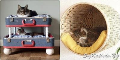 hasır kedi evi