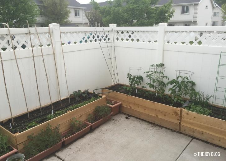 Raised bed patio garden // www.thejoyblog.net