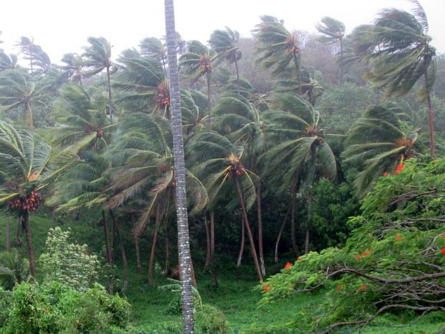 Vent fort en Polynésie