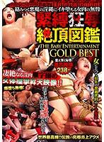 DBEB-091 絡みつく悪魔の淫縄にイキ