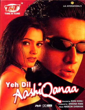 Yeh Dil Aashiqanaa 2002 Hindi 600MB DVDRip 720p ESubs HEVC