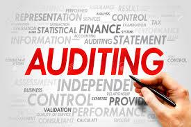Jenis-Jenis Audit Sektor Pemerintah dan Wewenang Audit Pemerintahan