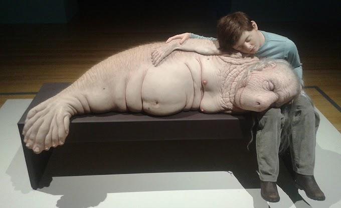 Exposição Comciência de Patricia Piccinini: o que nos torna humanos?