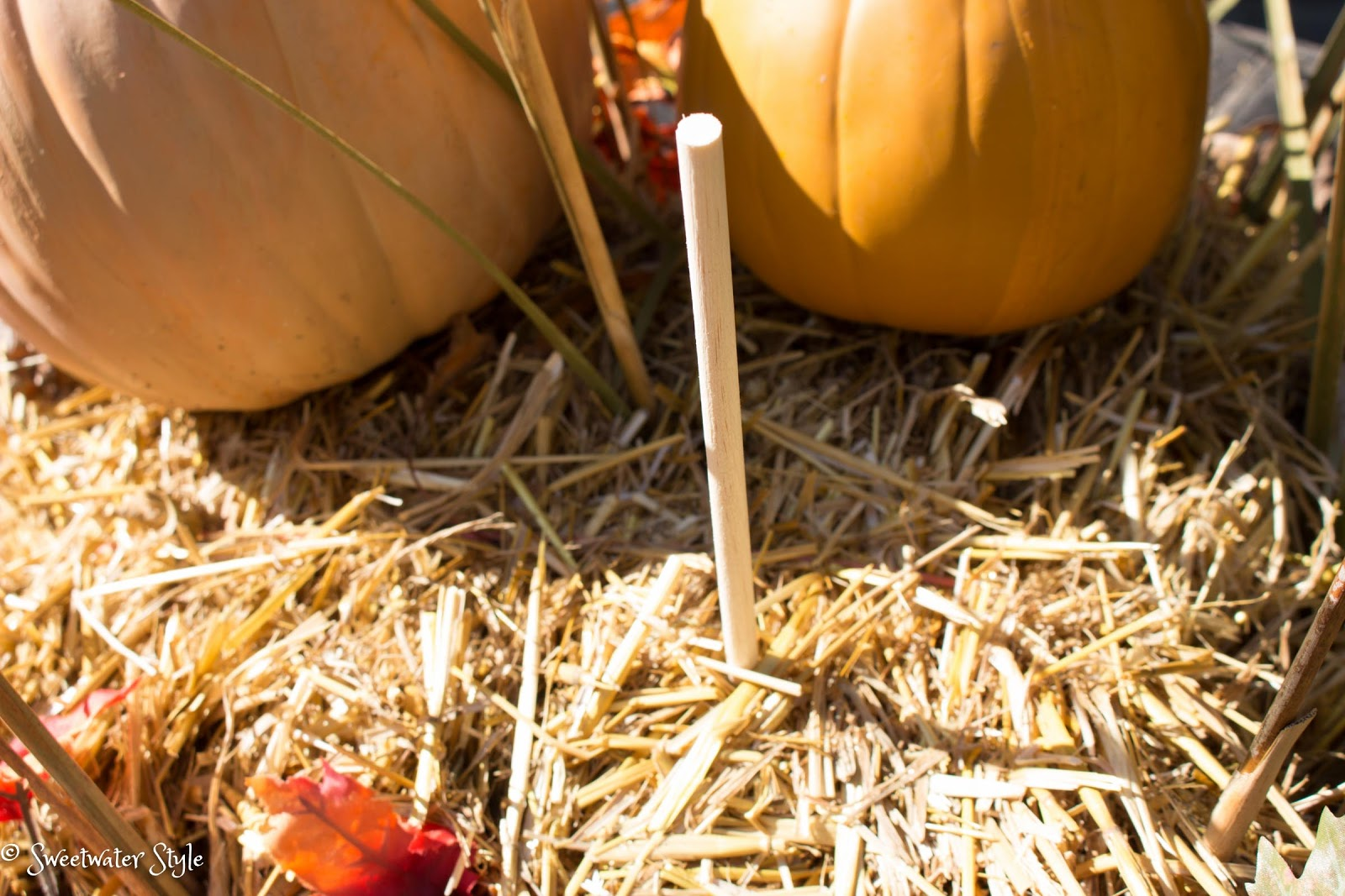 Keep Artificial Pumpkins In Place Outdoors Sweetwater Style