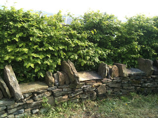 dry stone walling, life on pig row