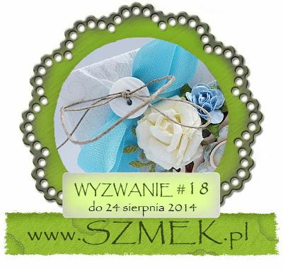 http://szmek-bloguje.blogspot.ie/2014/08/18-wyzwanie-u-szmeka.html