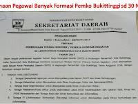 Pemerintah Kota Bukittinggi Penerimaan Pegawai Non PNS November 2017