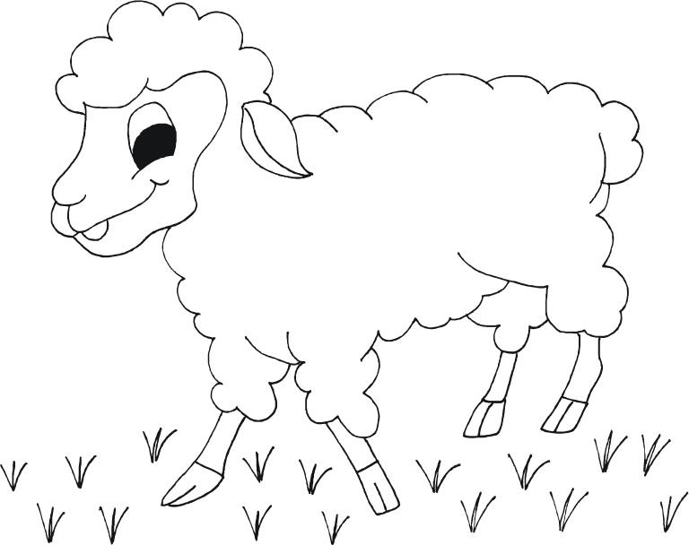Dibujos Para Colorear De Preescolar: Dibujo Oveja Infantil. Great Dibujos De Animales De Granja