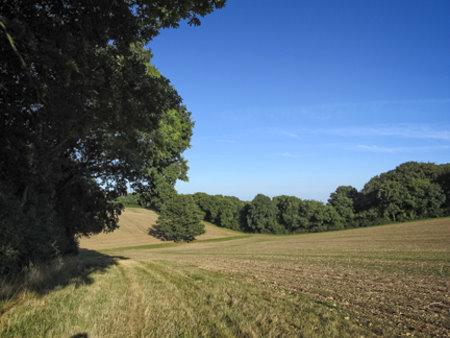 Well Manor Farm, Well, Hook, Hampshire