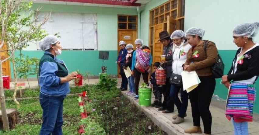 QALI WARMA: Programa social mejora calidad del servicio alimentario a través de pasantías con los Comités de Alimentación Escolar de Apurímac - www.qaliwarma.gob.pe