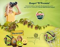 Logo Vinci gratis ogni giorno 3 palloni firmati Zespri