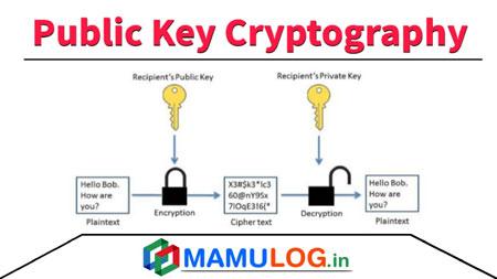 Public Key Cryptography in hindi