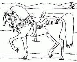Ausmalbilder Pferde Kostenlos Ausdrucken X Claudia Schiffer