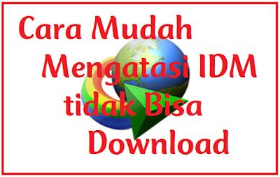 Cara Ampuh Mengatasi IDM Tidak Bisa Download File