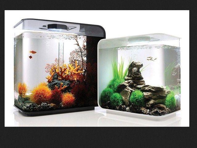 Harga Jenis Aquarium Mini Filter