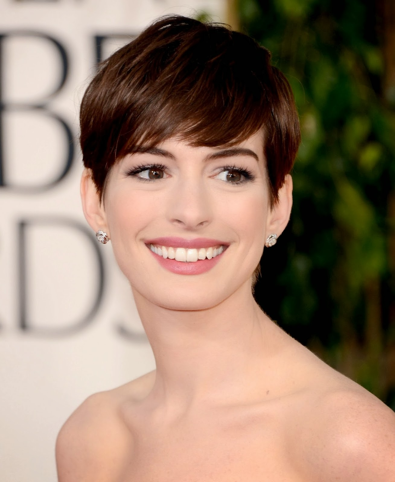 Top Celebrity: Anne Hathaway Who Is?