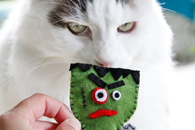 http://creativityunmasked.blogspot.co.nz/2016/10/diy-felt-frankenstein-catnip-halloween.html