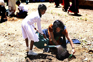 Priyanthi Chandrasekera, Project Manager-Scaling up Nutrition through a Multi-Sector Approach, FAO plants a tree with a student of Wijerama Maha Vidyalaya.