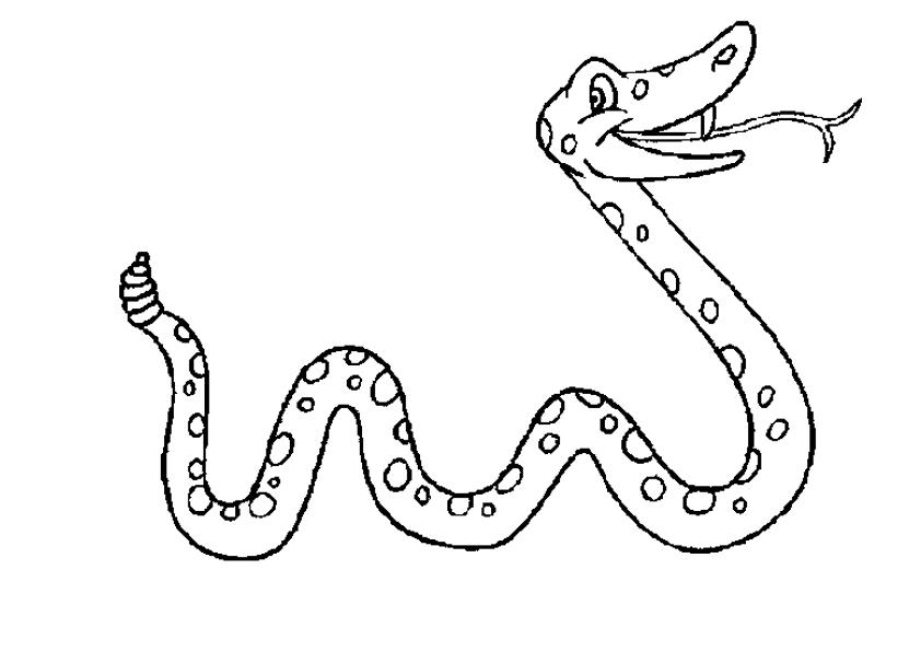 Dibujo De Un Animal Para Colorear: Blog MegaDiverso: Serpientes Para Pintar Y Descargar