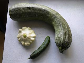 Первые кабачок, патиссон, огурец, 11 июля