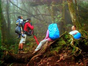 "cari teman pendakian yang ""seiman"""