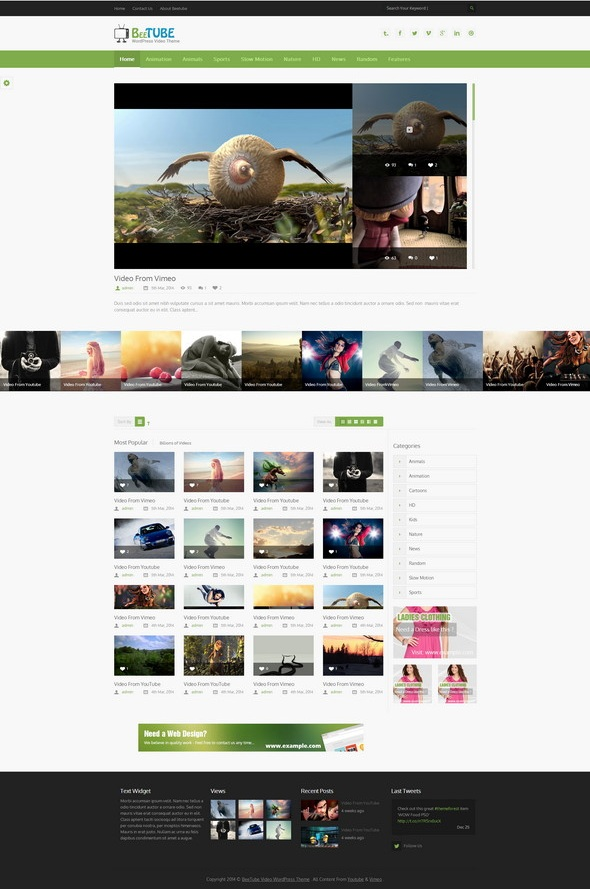 WordPress Responsive Video Themes