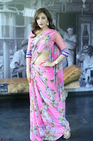 Angela Krislinzki Rogue Movie Fame Telugu Actress in Saree Backless Choli 060.JPG