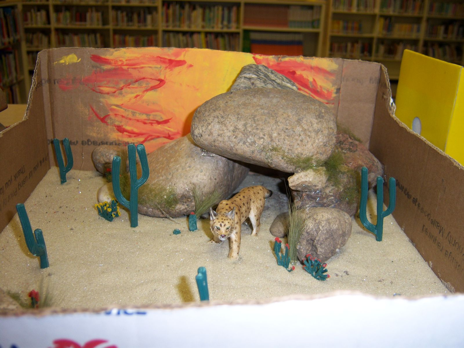 Mrs Hedberg S Animal Camouflage Diorama Project