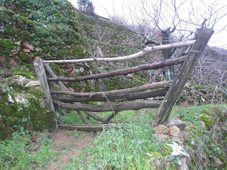 valle del jerte portera y cerezos