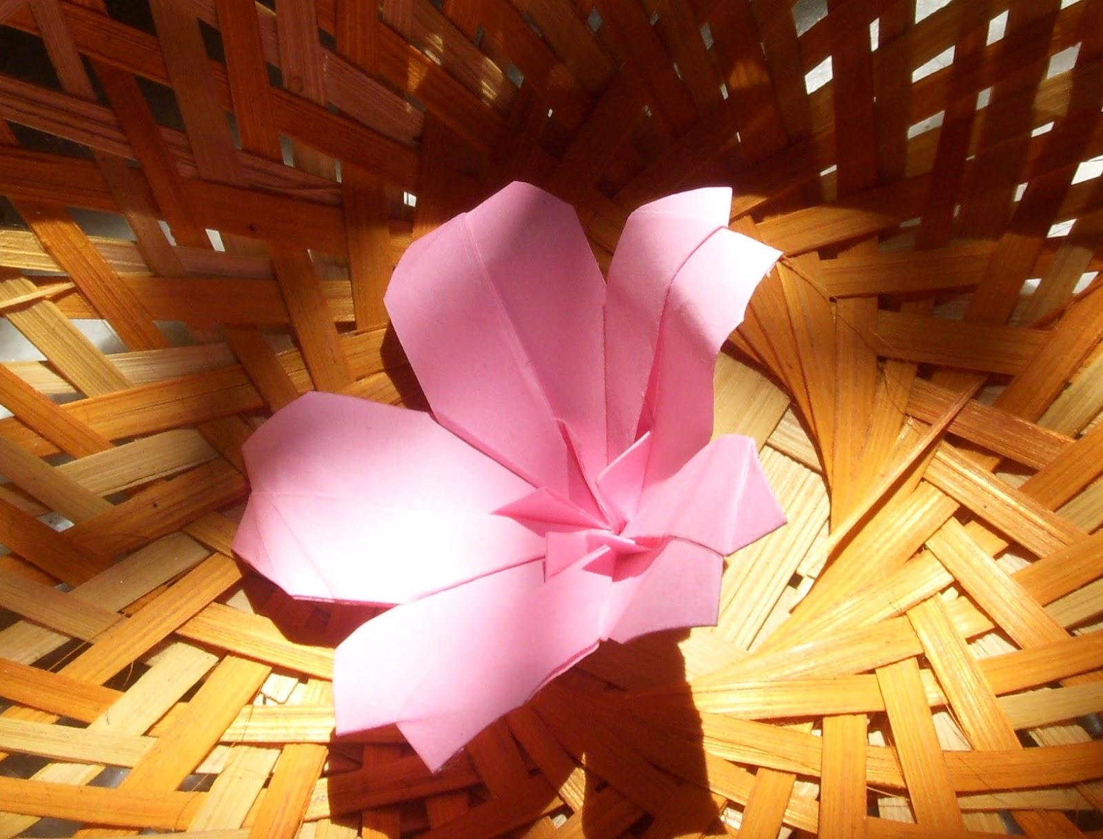 Origami: Origami Cherry Blossom - photo#43