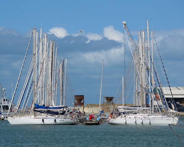 Yacht Club Livorno, Porto Mediceo, Livorno