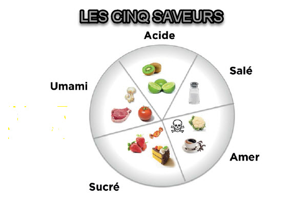 S t r a v a g a n z a le go t ami ou ennemi de notre quilibre nutritionnel - Pamplemousse amer ou acide ...