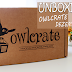 [UNBOXING] Owlcrate - Dezembro/2017