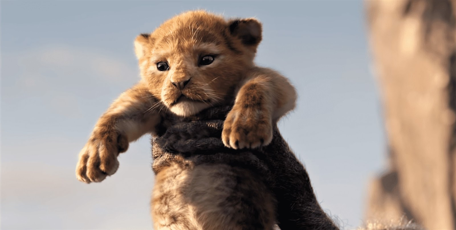 Upcoming Animated Movie 'The Lion King' (2019) First Teaser Trailer is Released