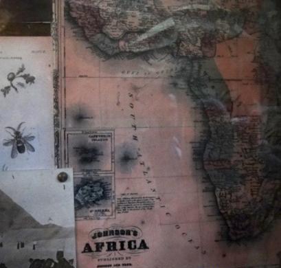 Hidden Mickeys em Mapa