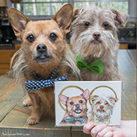Vicki Liu Pet Portraits Review