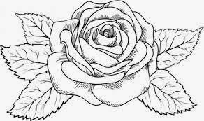 Dibujos De Flores Para Colorear Dibujos Para Ninos
