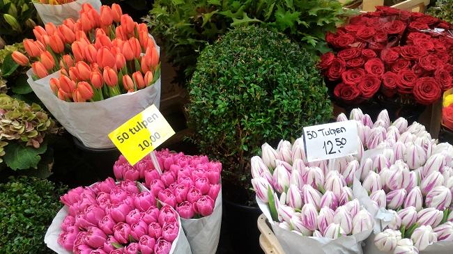 Tulipanes en Mercado de las Flores de Amsterdam