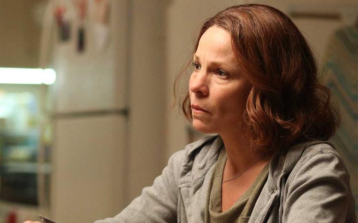 American Crime - Season 3 - Lili Taylor Returning