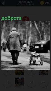 Идет пожилая женщина и рядом собака на колесах вместо лап, настоящая доброта