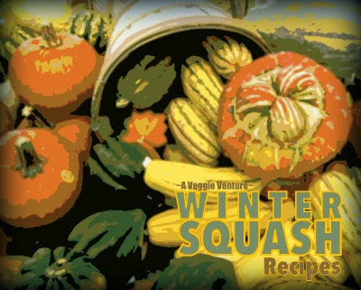 Tired of the same-old roasted squash? Find new inspiration in this collection of seasonal Winter Squash Recipes @ AVeggieVenture.com, savory to sweet, salads to sides, soups to supper, simple to special. Many Weight Watchers, vegan, gluten-free, low-carb, paleo, whole30 recipes.