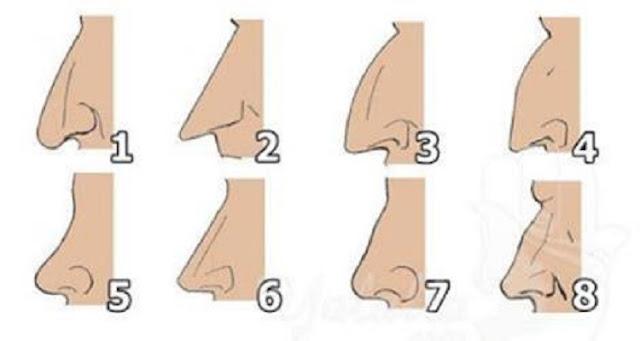 هل تريد معرفة شخصيتك من شكلك أنفك ؟ هذا الموضوع يخصك !