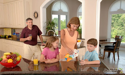 Choosing The Best For Your Family's Home
